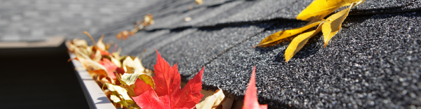 Gutter Cleaning Service | Rain Gutter Cleaning Company