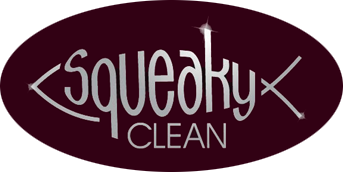 Squeaky Clean Pressure Washing Company